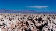 Gorgée de sel et extrêmement sèche, la terre est difficilement cultivable