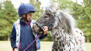 A dos de poney dans le parc Malou!