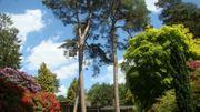 Le jardin de Béatrice et Jean-Werner