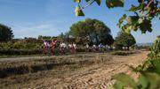 Cap sur la Provence ce samedi dans Grandeur Nature