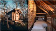 Logements insolites : une cabane dans les bois et une maison de 140 cm de large