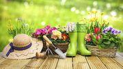Que faire en cas d'accident de jardinage ?