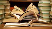 Un 12ième roman pour Willy Grimmonprez