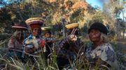 Les artistes Tjanpi de la région de Kaltukatjara (Territoire du Nord de l'Australie).