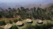 Ethiopie : le rêve écologique d'un entrepreneur au cœur vert