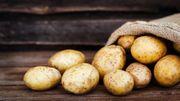 Déconfinement: lait, vin, pommes de terre, que faire des excédents de la crise du coronavirus?