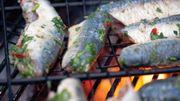 La sardine au barbecue, simple et bon!