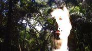 Palmiers et arbres tropicaux dans le clip de Thomas Azier