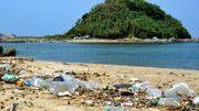 Près de 5millions de déchets d'emballages alimentaires récoltés en une journée sur les plages du monde