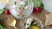 Variez les plaisirs à l'apéritif avec ces recettes autour de la truite de Leslie en cuisine