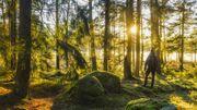 La nature, une valeur refuge en temps de pandémie