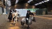 Week-end du cheval en Wallonie samedi 6 & dimanche 7/10