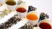 Rooibos: les bienfaits de cette infusion qui n'est pas du thé
