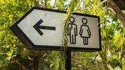 Journée mondiale des toilettes: quelques astuces pour un WC moins polluant