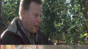 Guy Lemaire, pépiniériste