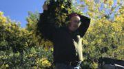 Jean-Paul Reynaud, 70 ans cette année, travaille toujours sur les collines