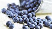 Les myrtilles et le raisin rouge pour doper le système immunitaire
