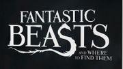 """J.K. Rowling va publier le scénario des """"Animaux fantastiques"""""""