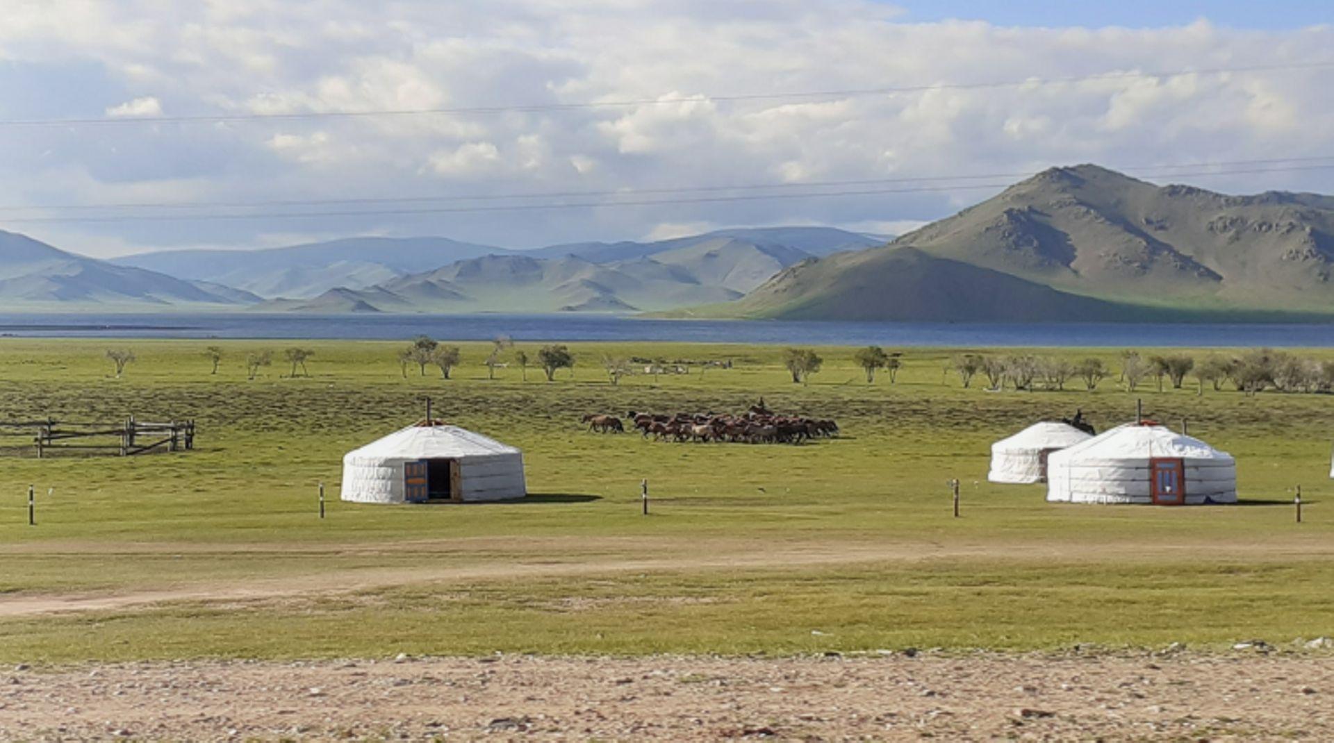 rencontres au bout du monde mongolie)
