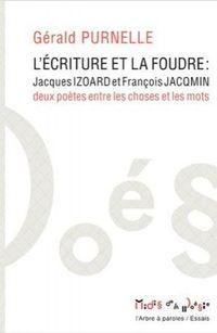 """Livre """"L'écriture et la foudre"""" de Gérald Purnelle aux éd. Garnier-Flammarion"""