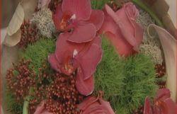 montage floral - F. Vanodonink