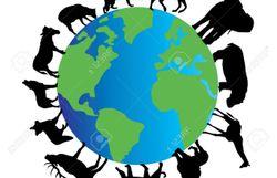 C'est la journée Internationale pour les droits des animaux