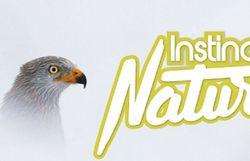 Soirée Festival Nature Namur/Instinct Nature