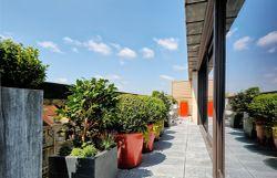 Une terrasse à Uccle transformée en un espace vert