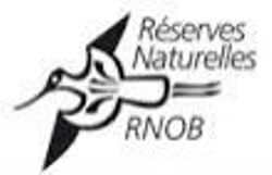 logo rnob