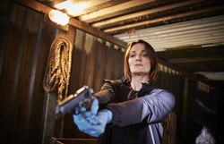 Qui veut connaître la suite et fin des aventures du Comissaire Bancroft ?