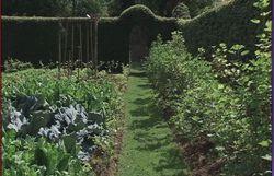 Le jardin de Wivina et Guy à Masbourg