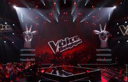 The Voice Belgique : Rendez-vous le 9 janvier sur la Une