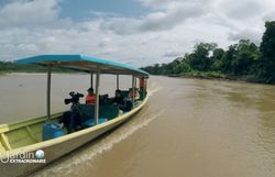 Arrivée de notre équipe dans la plus grande forêt tropicale du monde