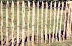 Rediffusion d\'été n°7 - Par-dessus les haies et clôtures - RTBF ...