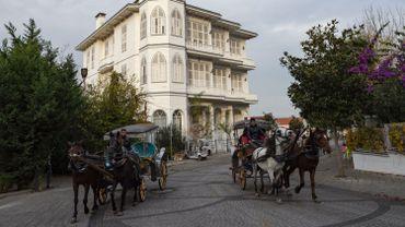 Le gouverneur d'Istanbul a annoncé vendredi la suspension des calèches pour trois mois.