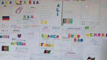 Au programme de cette classe DASPA : français intensif, maths et sciences