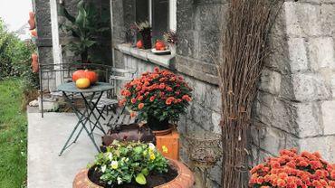 Plantations automne hiver,  le consommateur est très actif dans son jardin