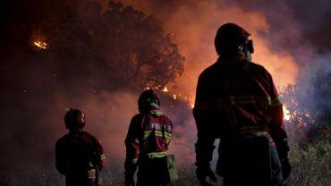 Les incendies de forêt meurtriers au Portugal ces quinze dernières années