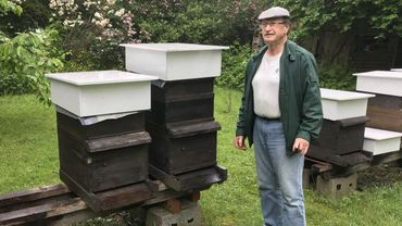 Cette année, Georges Kaisin, apiculteur depuis 40 ans, n'enregistre aucune perte dans son rucher. Mais ses collègues ne sont pas tous aussi chanceux.