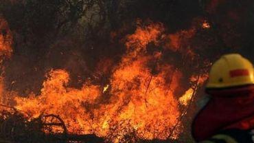 Bolsonaro étudie l'envoi de l'armée pour lutter contre les incendies incontrôlés