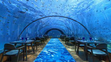 Restaurant sous-marin 5.8 de l'hôtel Hurawalhi Maldives