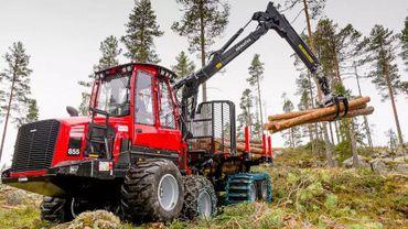 Les forestiers se plaignent de ne plus pouvoir travailler dans la zone touchée par la peste porcine (illustration).