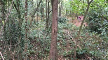 A Cointe, volée de bois vert des riverains contre un projet de parc habité