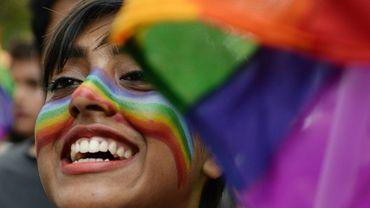 Photo du 24 juin 2018 montrant une militante indienne LGBT prenant part à une marche des fiertés à Chennai dans l'Etat du Tamil Nadu