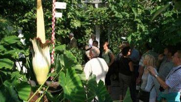 L'accord relatif au jardin botanique de Meise est signé