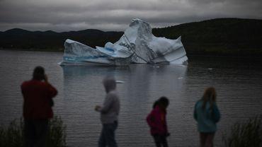 """Au Canada, les touristes se bousculent dans le """"couloir des icebergs""""."""