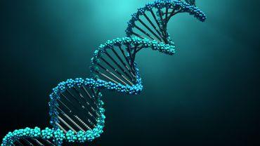 Qu'y a-t-il dans votre ADN?