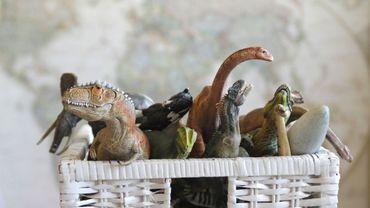 18ème grande collecte de jouets en bon état ce samedi dans les recyparcs Hygéa
