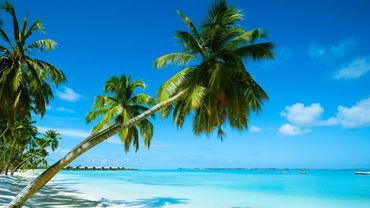 Les touristes en vacances aux Maldives ont une importante empreinte carbone - © PhotoTalk - Getty Images