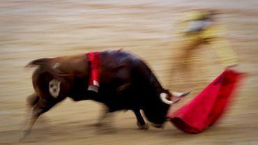 Espagne: des milliers de personnes manifestent pour la suppression de la tauromachie
